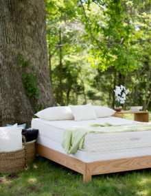 Savvy Rest Serenity Organic Latex Mattress