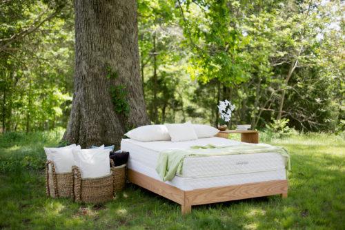 Savvy Rest Serenity Organic Latex Mattress