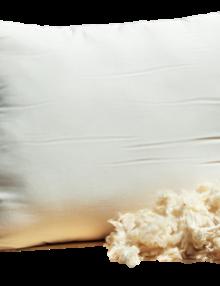 White Lotus Kapok Pillow